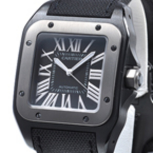 Replica Cartier Santos 100 Titanium Automatic Watch W2020010